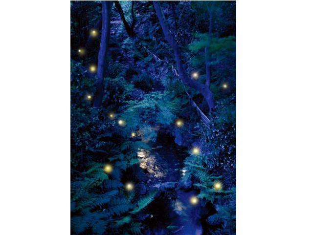 東京・目白椿山荘「ほたるの夕べ2012」を開催