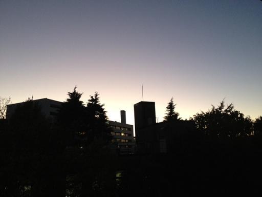 11月28日は久しぶりに夜の時間の満月~満ちる月のエネルギーを感じて