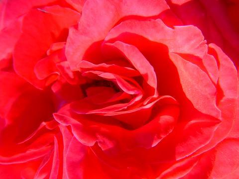 田中美帆の美女子メイキング【アロマテラピー・風水】PART.3 ~一年の運をリセットする入浴法~