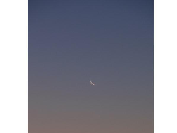 6月9日は双子座の新月~新月のエネルギーを受け取って、何でも叶えられる貴婦人になろう