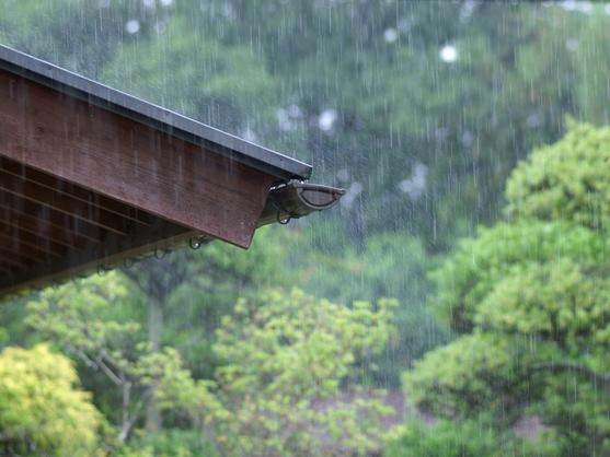 梅雨は頭が痛い気がする!?  ~スカッとさわやかに湿った気分を解消~
