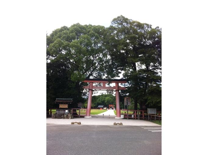 波動の大きな純粋エネルギー~「上賀茂神社」