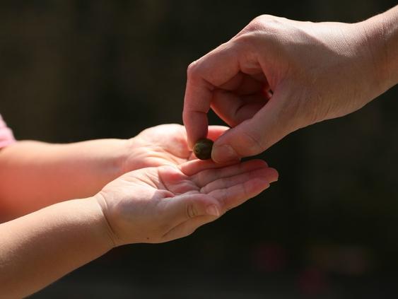 あなたと親との関係は?~人生の基本は、幼少時期の親からすべて与えられるPART.2
