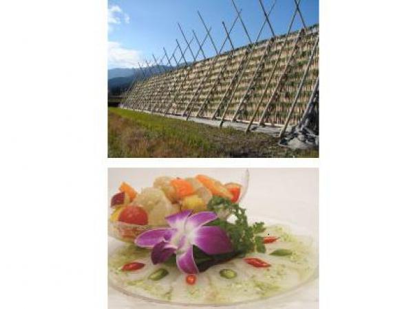 南国・宮崎がテーマ! 野菜や果物・畜産物を満喫する「Umekiki(うめきき)春のおいしい食祭」~グランフロント大阪
