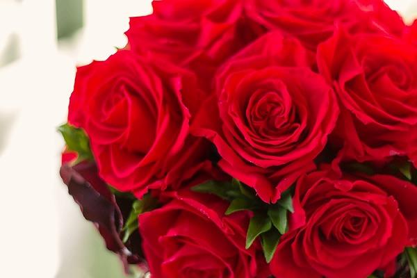 男性から女性に花を贈る「フラワーバレンタイン」でお互いの愛や感謝の気持ちを伝え合おう!