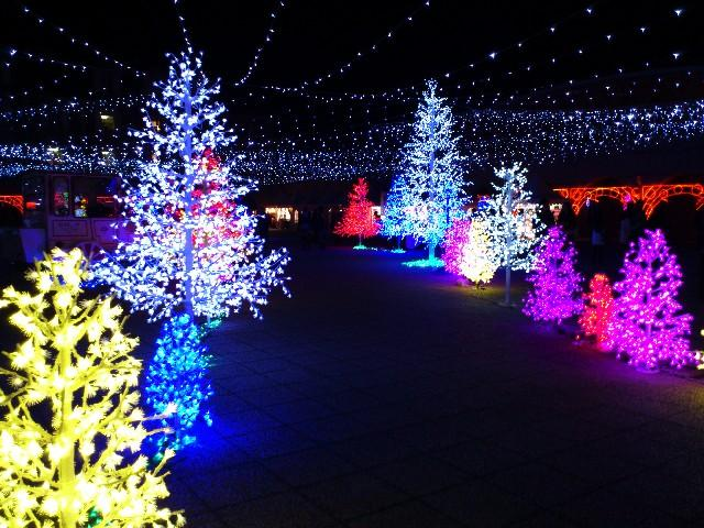 """イルミネーションやX'masツリーにケーキ""""日本一""""なクリスマスをピックアップ"""