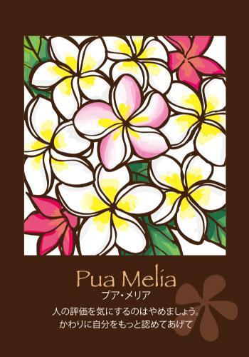あなたの知らないハワイに出会う!vol.1~ハワイアンカードを使って日々の生活を豊かにしませんか?~