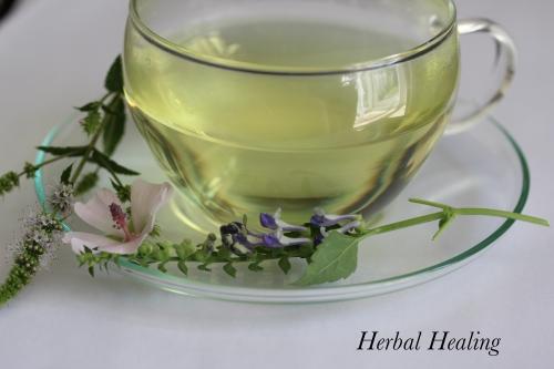イギリスのハーブ治療家【Medical Herbalists / Phytotherapists】Vol.1