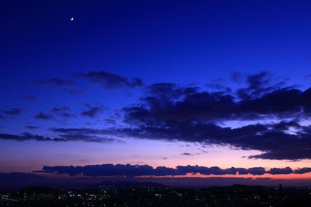 蒼月紫野の「新月の願い事」Vol.2<br>~願い事が叶う確率UPを目指せ!~
