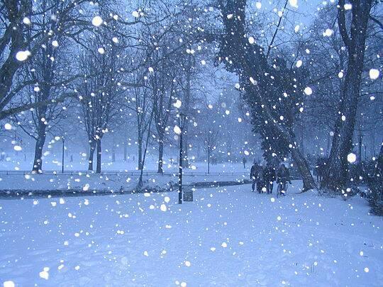 20150409093929  氷ひめ 雪