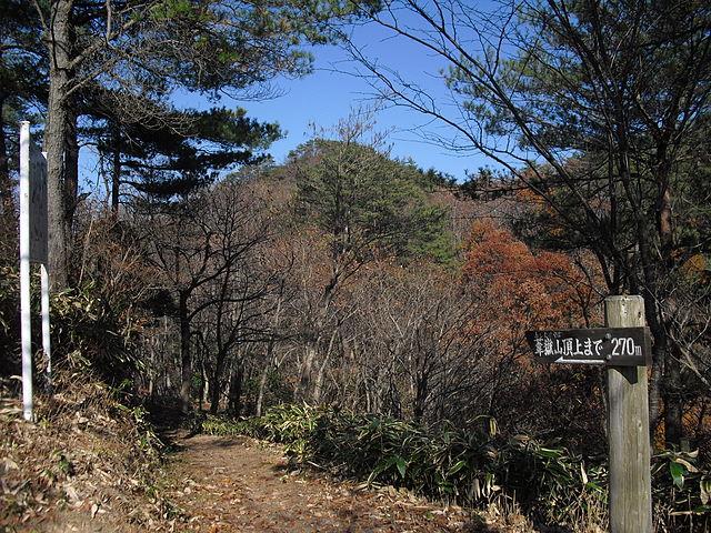 日本のピラミッド(葦嶽山wiki)
