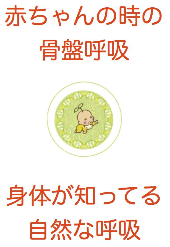 スクリーンショット 2015-06-15 16.51.10