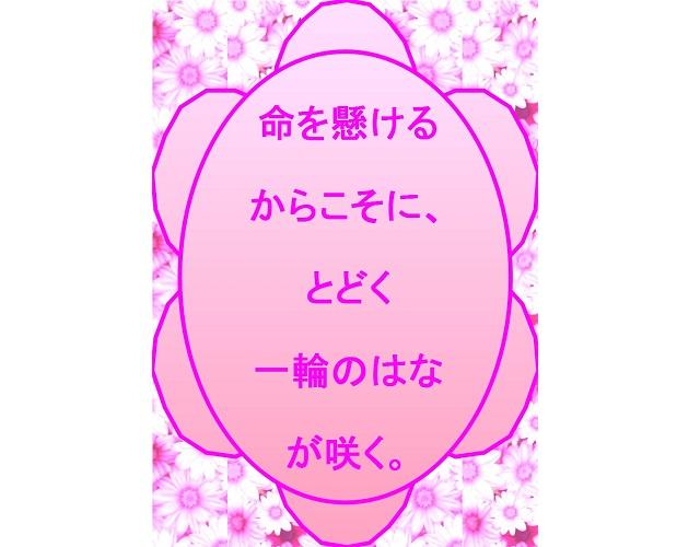 スピリチュアル界の新人類ともくんの大開花プラン!PART.4~都合の良い人生=必然は10000%!~
