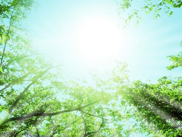 やりたいことはハートに聴いてみよう<br>~魂も宇宙も私も同じ源からできている~