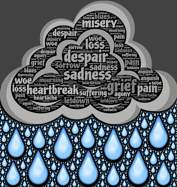 sadness-717439_640