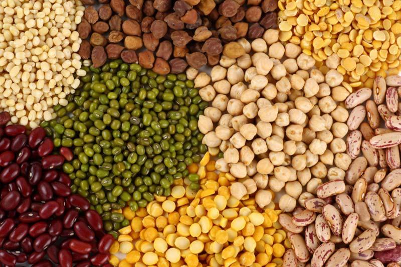 バラエティ豊かなインドの豆類
