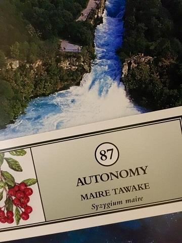 ニュージーランドフラワーエッセンスジャパンマイレタワケ