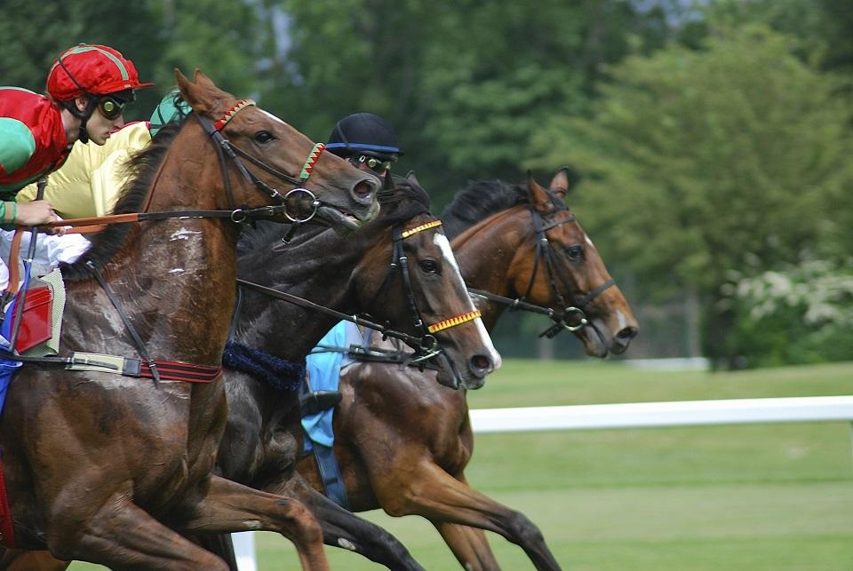 racecourse-637475_1920