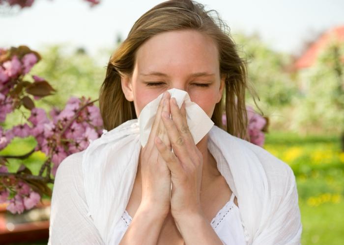 もう花粉はいやっ! そんな人のための避粉地情報