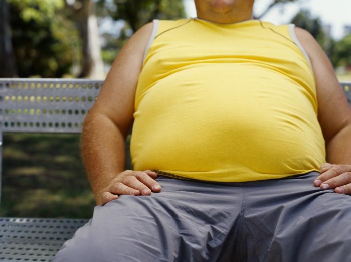 貴方の将来は肥満? それとも……<br>肥満可能性テスト
