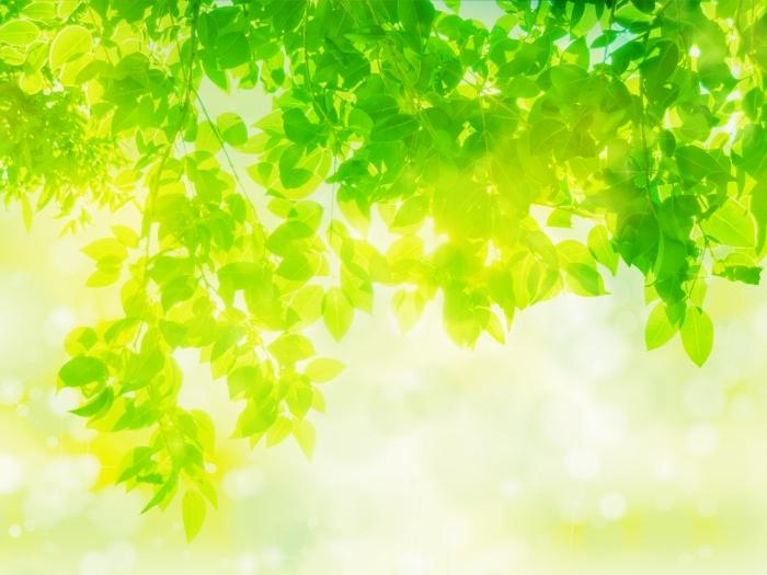 スピリチュアルな生き方とは?<br>~超感覚を開花させることで垣間見える世界~