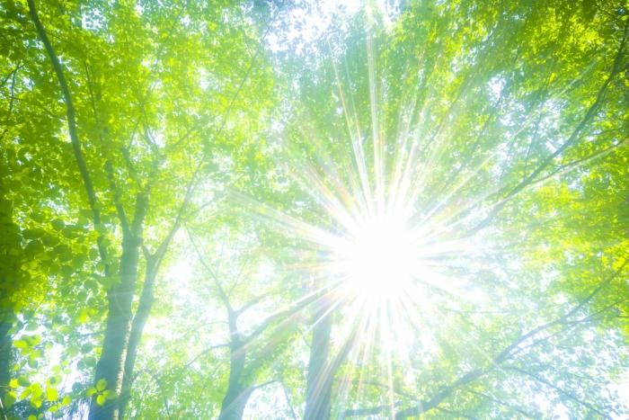 紫外線アレルギーに気をつけて!<br>~春から始める紫外線対策~