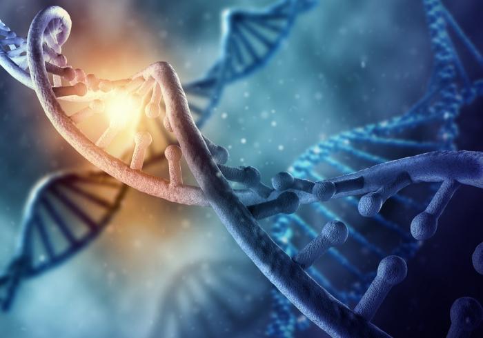 三重螺旋のDNAは本当に現れたのか?