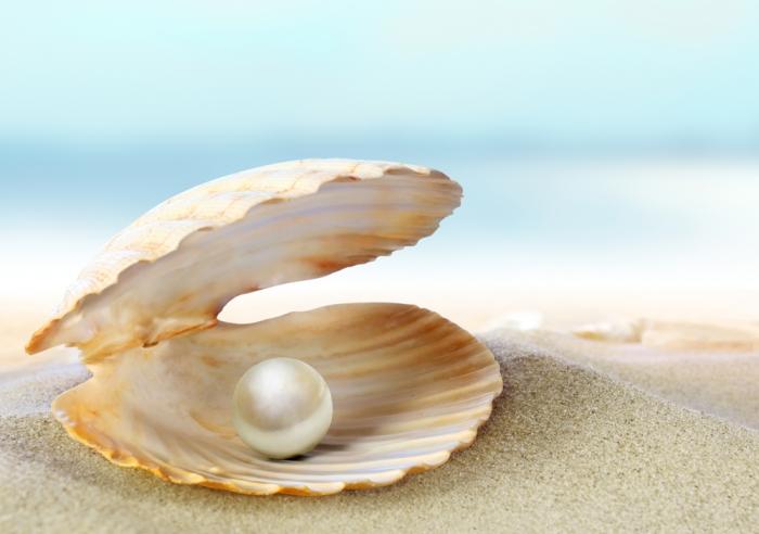 全てを受け入れること ~真珠が美しい理由~