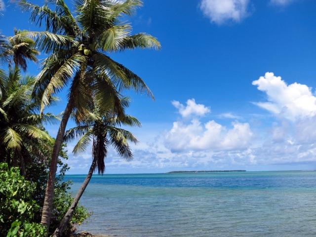 夏に運勢がいい人とは<br>〜占シェルジュ桑島の季節占い