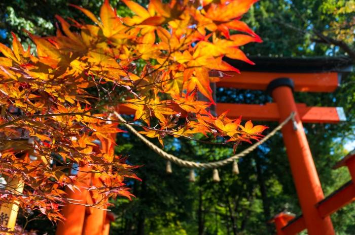 ~幸せのカギを開ける~<br>語り継がれていく、古き良き日本の伝統