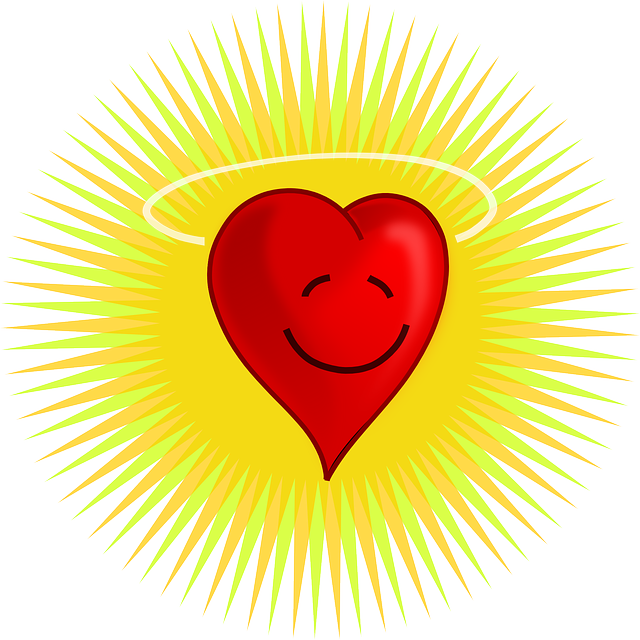 heart-37310_640