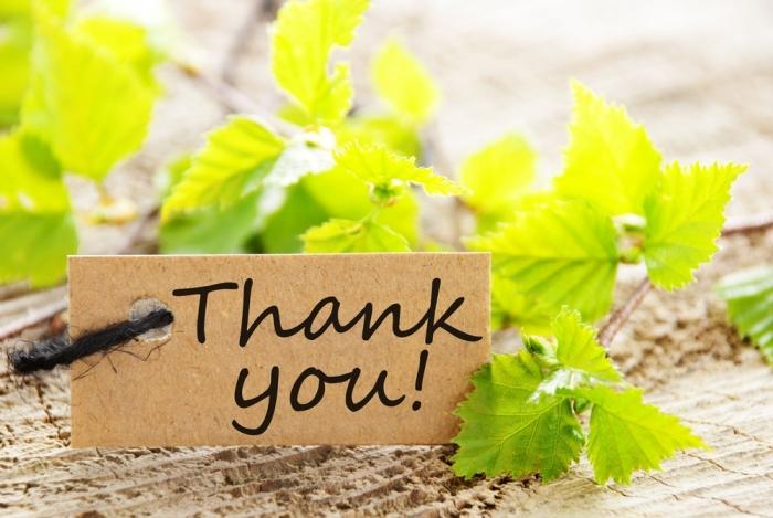 「ありがとうと無視」の違いは分かったけれど、「ばかやろうと無視」の違いは?