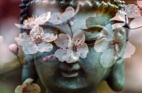 buddha-1279902_1920