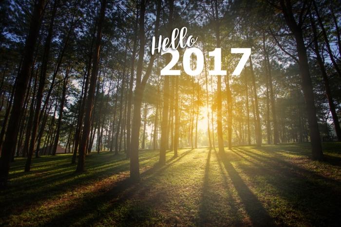 2017年のエネルギーは……<br>〜ヌメロロジーやオーラソーマの見地から