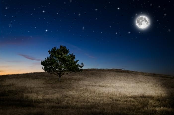 「2017/2/11 09:34~獅子座の満月」<br>〜蒼月紫野の「満月のお願い事」vol.40