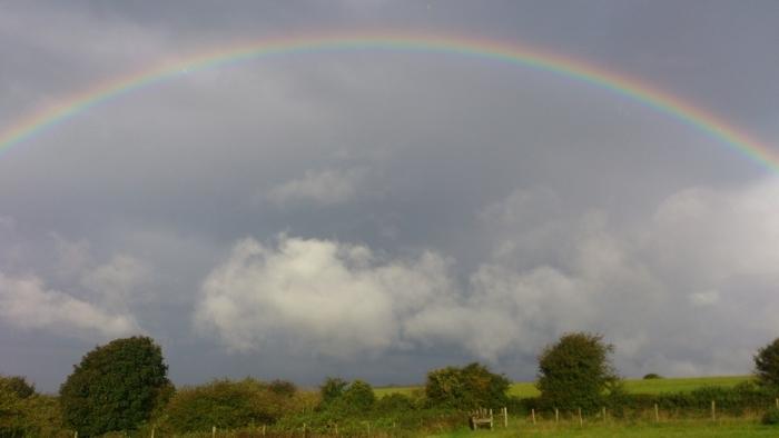 虹〜The rainbow<br>……いつも水に感謝し、ありがとうを 〜 Always acknowledge and say thank you to water