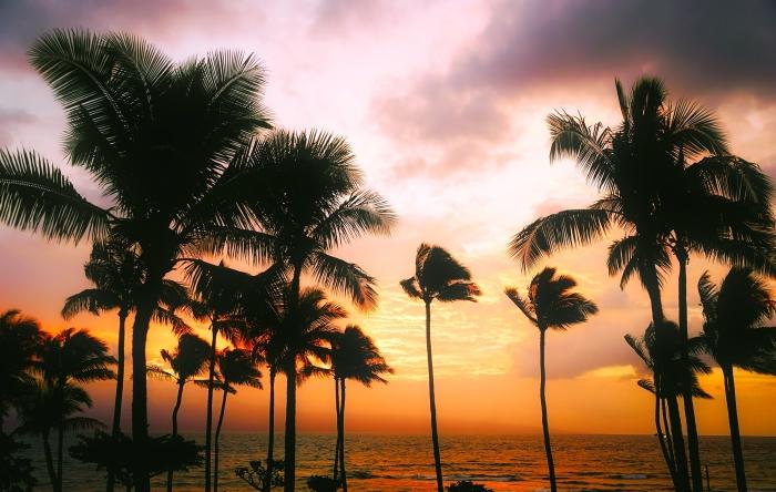 ハワイ島で女神ペレにお願いする時の秘訣〜現地ガイドが教えてくれた秘訣とハワイ島の女神ペレにまつわる不思議な 出来事(前編)〜