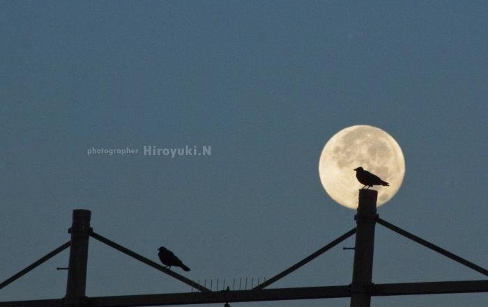 【緊急掲載】満月、新月の影響で身体と心の不調はありませんか?—HSP、エンパス、霊感体質の方へ