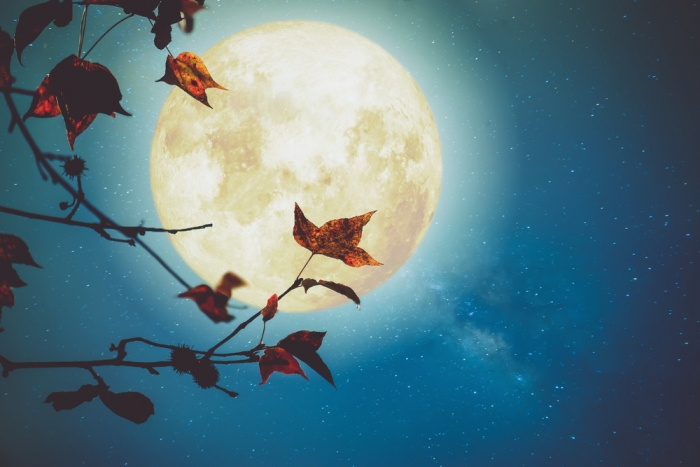 武藤悦子の月詠 ルナ(新月/満月)&オーラソーマ 2017年10月6日 3時40分はおひつじ座♈️の満月です