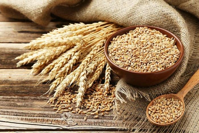 ■免疫を高める食品選び〈7〉 小麦は本当に悪モノ?~グルテンフリー食・アーユルヴェーダの見解 その2~インド生活『村上アニーシャのアーユルヴェーダ』vol.89