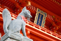 氷室奈美,京都,伏見稲荷,神社,開運,参拝